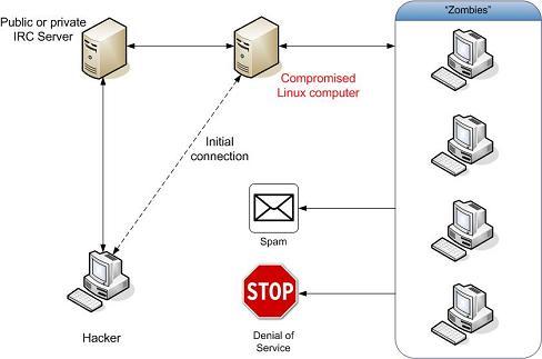irc-botnet-tn.JPG