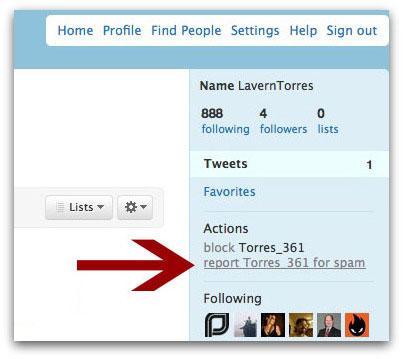 Report Twitter spam
