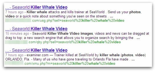 Seaworld killer whale malicious search result