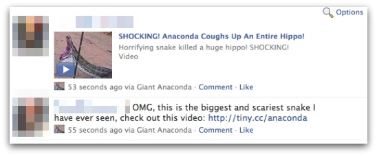 Anaconda coughs up hippo messages