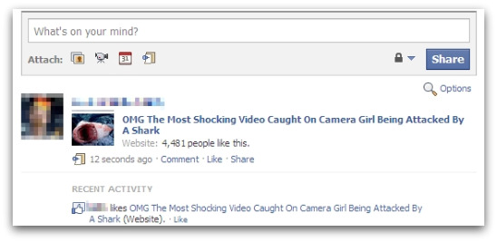 Link to shark video page posted on your Facebook page