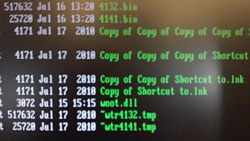 Directory listing of infected USB key