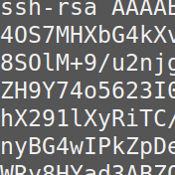 SSH crypto public key