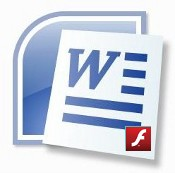 Word/Flash logo