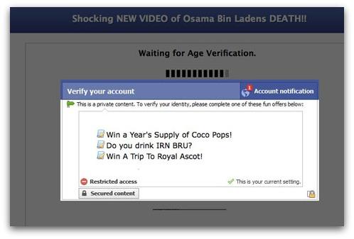 Osama bin Laden survey scam