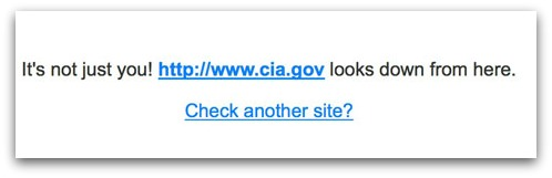 The CIA's website is hard to get to