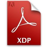XDP file