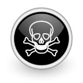Skull. Image from Shutterstock