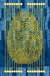 Fingerprint scan. Image from Shutterstock