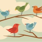 Tweetie birds. Image from Shutterstock