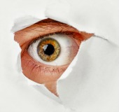Eye spy, courtesy of Shutterstock