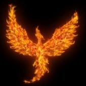Phoenix. Image from Shutterstock