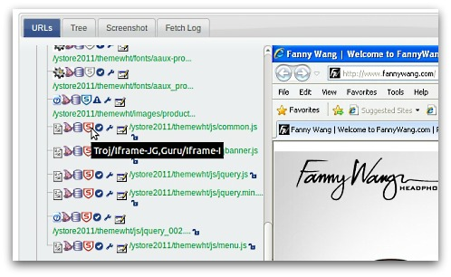 Analysis of Fanny Wang website