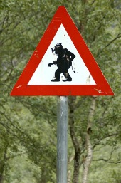 Troll sign. Image courtesy of Shutterstock.