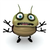 Bug. Image courtesy of Shutterstock