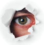 Eye spy. Image courtesy of Shutterstock.
