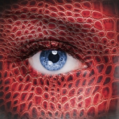 Red eye. Image from Shutterstock