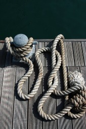 Rope. Image courtesy of Shutterstock.