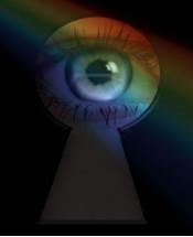 surveillance-narrow