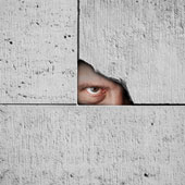 Spy. Image courtesy of Shutterstock.