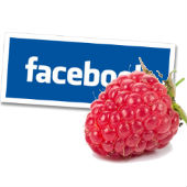 Image of raspberry courtesy of Shutterstock