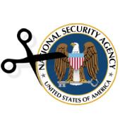 NSA funding cuts