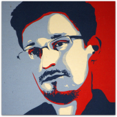Snowden year one