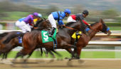 Image of racing courtesy of Cheryl Ann Quigley / Shutterstock.com