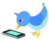 Bird. Image courtesy of Shutterstock