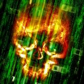 Skull. Image courtesy of Shutterstock.