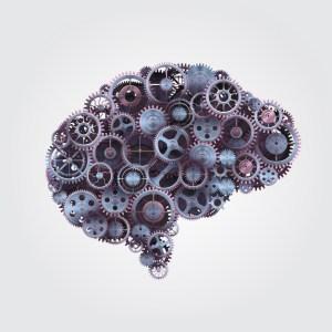 Cognitive Fingerprinting