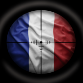 French websites attacked