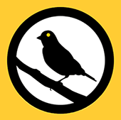 Canary Watch