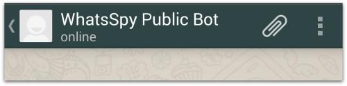 WhatsSpy Public Bot