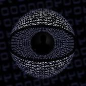 Eye. Image courtesy of Shutterstock