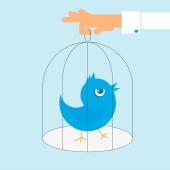 twitter-bird-cage-170